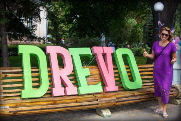 Отчет о фестивале Drevo Family Fest от Цветочного домика Floristella