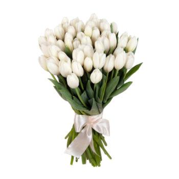 Букет из 51 белого тюльпана Белый плен