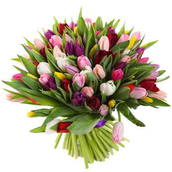 Букет разноцветных тюльпанов Микс красок