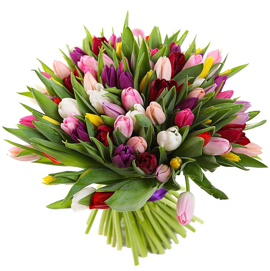 Букеты красивых тюльпанов картинки