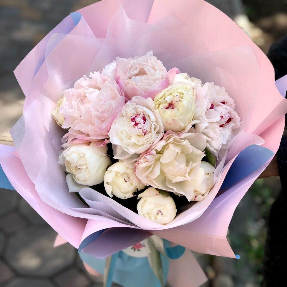 Сезонные цветы