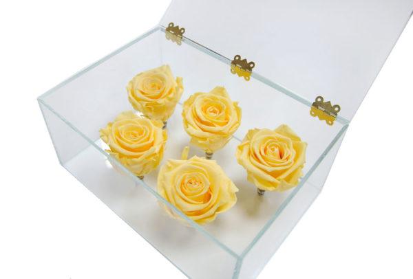 5 персиковых неувядающих роз в Ларце