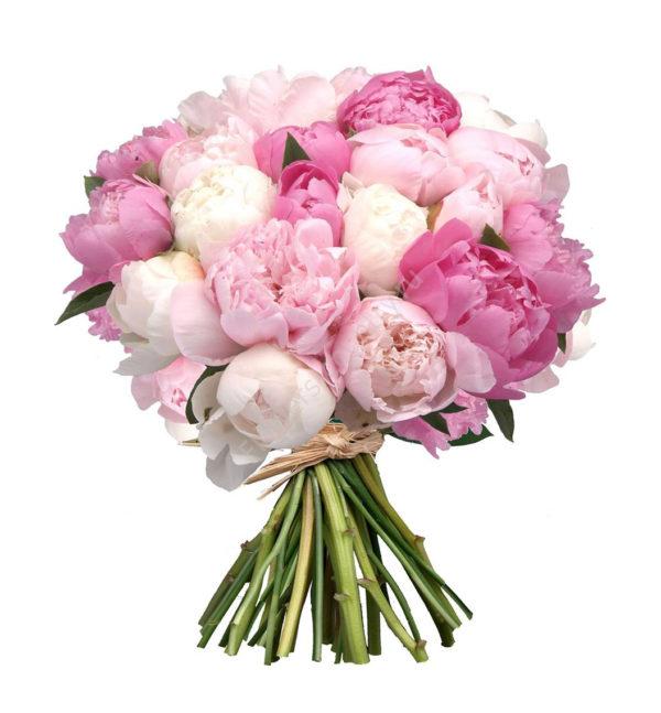 Букет из 35 белых и нежно-розовых пионов