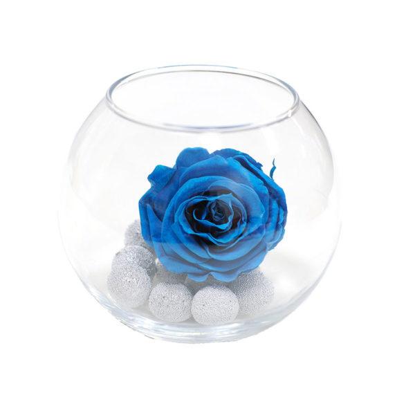 Неувядающая синяя роза Аквамарин